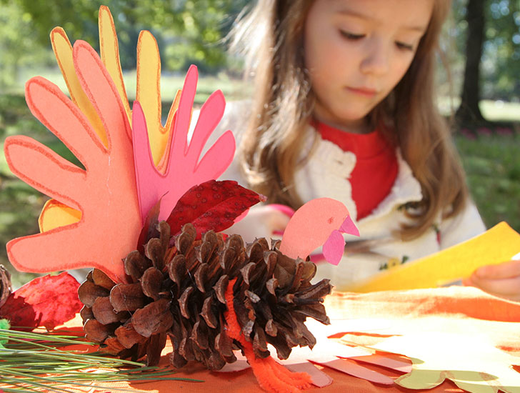 c42e9cc0-0da2-48d1-a423-1ad0dad618be04-tg-fun-things-pinecone-turkey