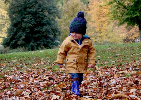 happy-autumn-fall-child-season-cute-outdoor-1031171