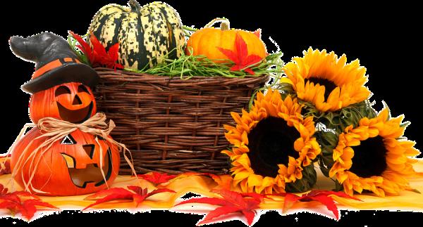 autumn-964385_960_720